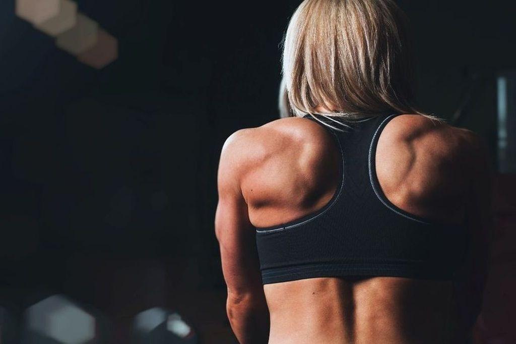 本当に筋肉は脂肪より重たいの?脂肪 VS 筋肉